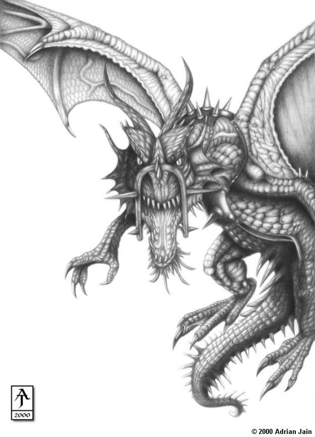 Gallery furry art dragon pic arts dessin fantastique - Dessins dragon ...