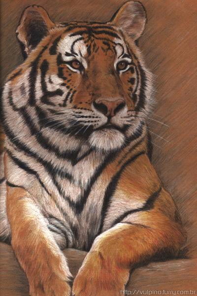 вышивки крестом Белый тигр